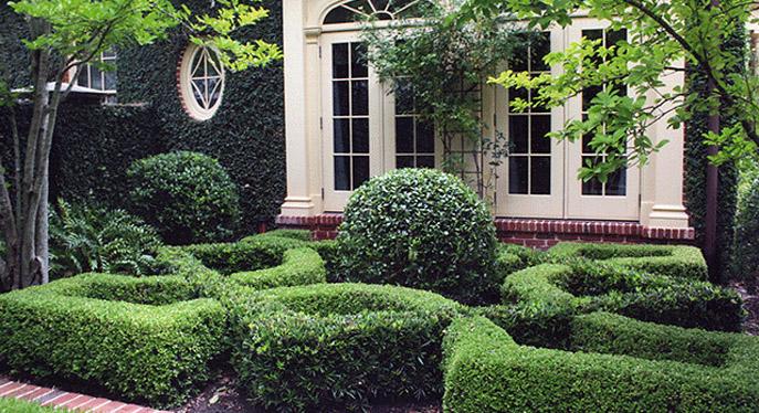 A Parterre Garden Design