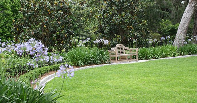 Peacevul Garden Deisgn with Bench
